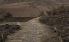 Foto 1 - Adjudicados los trabajos de mejora de una pista forestal en Villarijo