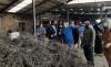 Una imagen de la visita a la fábrica León Brezo Ecológico. /Jta.