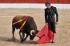 El diestro soriano Rubén Sanz el pasado julio en El Burgo | Imagen de David Cordero compartida en redes por el equipo de comunicación del torero.