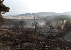 Una imagen del incendio. /BRIF