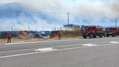 10.000 hectáreas calcinadas en el incendio de Cepeda de la Mora en Ávila