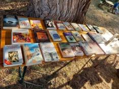 I Encuentro Literario de Fuentecantos.