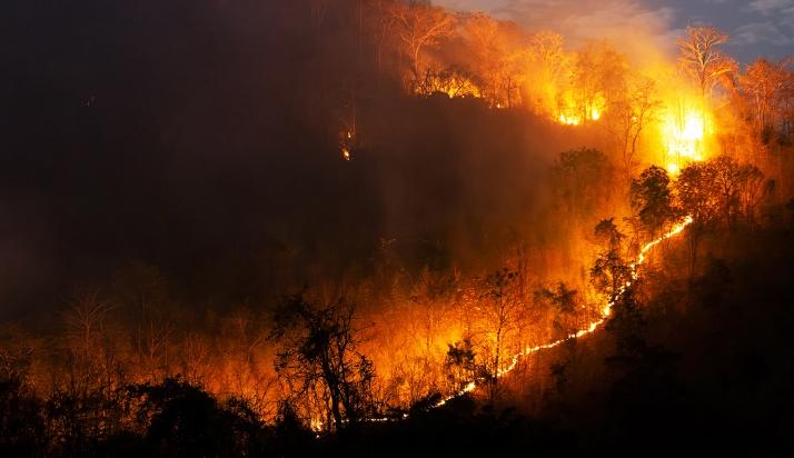 Declarada la alarma de riesgo de incendios forestales el 14, 15 y 16 de agosto en Castilla y León