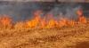 Foto 1 - Dos pequeños incendios en Cabrejas del Pinar y en Villaverde del Monte
