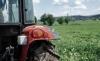 Foto 1 - Calatañazor arrienda 26 hectáreas de cultivo por cinco años