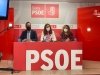 Foto 1 - Los procuradores socialistas reclaman una explicación del Plan Soria