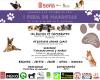 Foto 1 - Soria celebra este domingo su I Feria de Mascotas