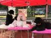 Foto 1 - La lluvia impide la celebración de la I Feria de Mascotas de Soria
