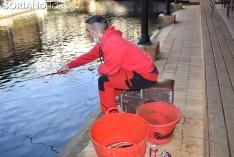 Foto 5 - Galería de imágenes: Fernando Bañuelos gana el concurso de pesca de ciprínidos de San Saturio