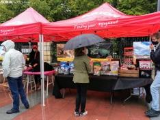 Foto 9 - La lluvia impide la celebración de la I Feria de Mascotas de Soria